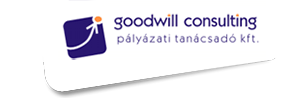 Goodwill Consulting